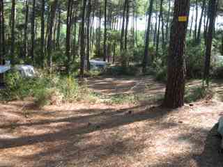 Arnaoutchot camping pitches