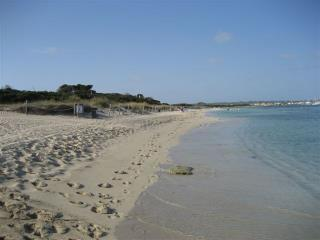 Es Cavall d'en Borras, Formentera