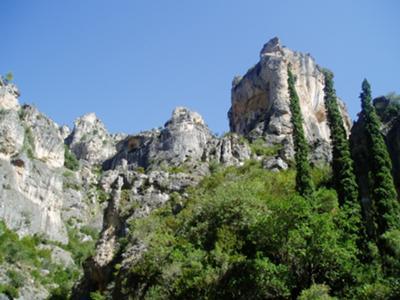 Surrounding Hills near Finca Ninfas del Agua