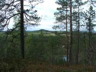View at Kroktrask