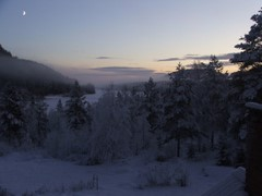 Kroktrask in winter