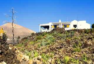 Villa Elephante Blanco