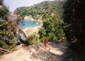 Rog cycling to beach on Skiathos