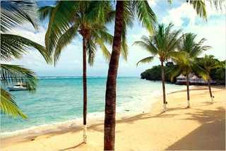Virgin Holidays - Couples Tower Isle beach