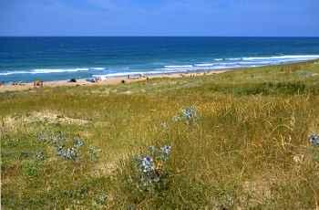 Arnaoutchot Atlantic Ocean