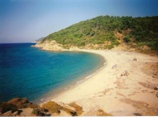 Agistros beach Skiathos