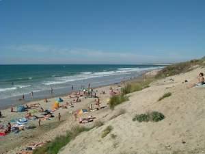 Naturist beach scene