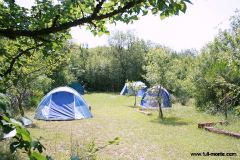 Camping area at Camp Full Monte