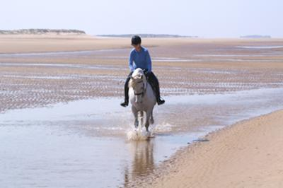 Horse rider on Holkham beach with naturist area in the background